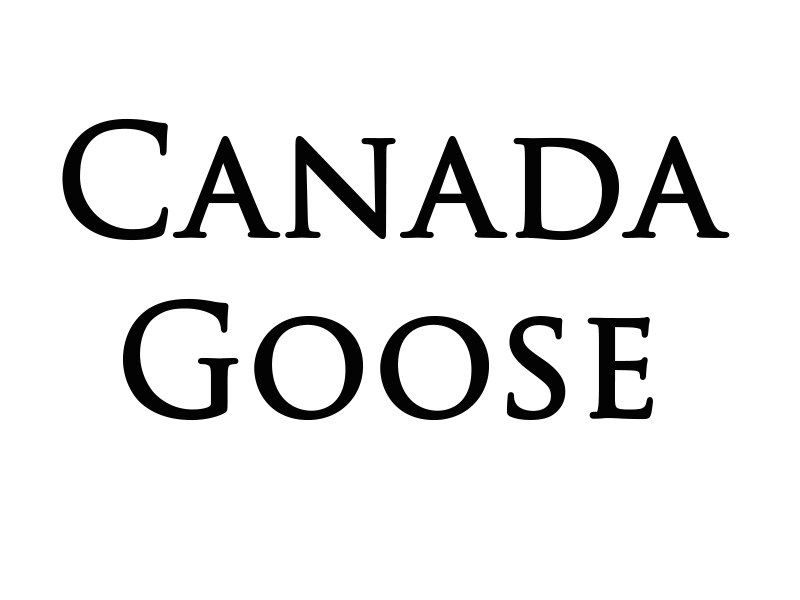 Canada Goose jackets online cheap - Capital Iron and Canada Goose