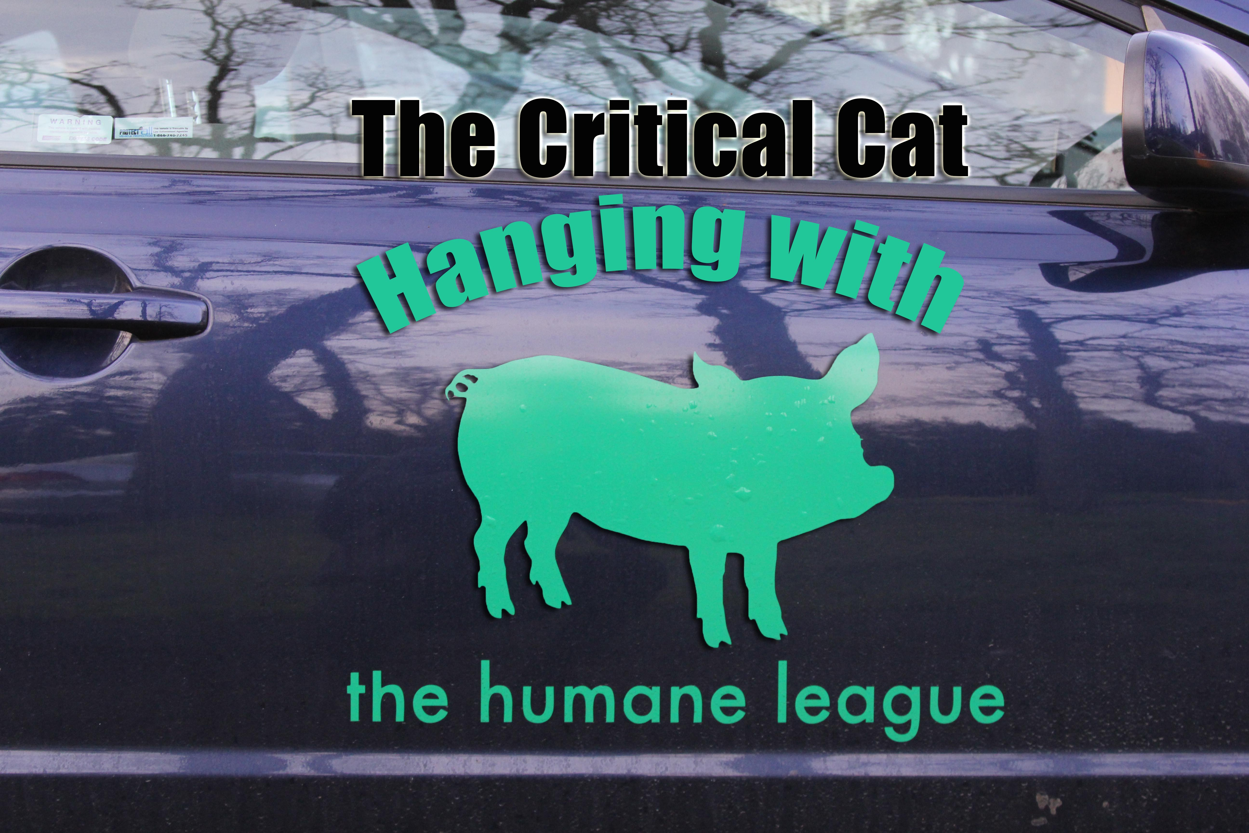 Hanging with The Humane League
