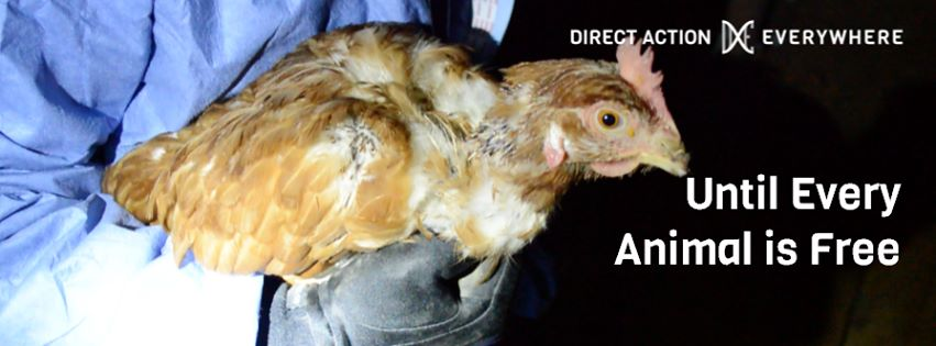 Leaders: Direct Action Everywhere